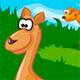 Животные в зоопраке: Поиск отличий